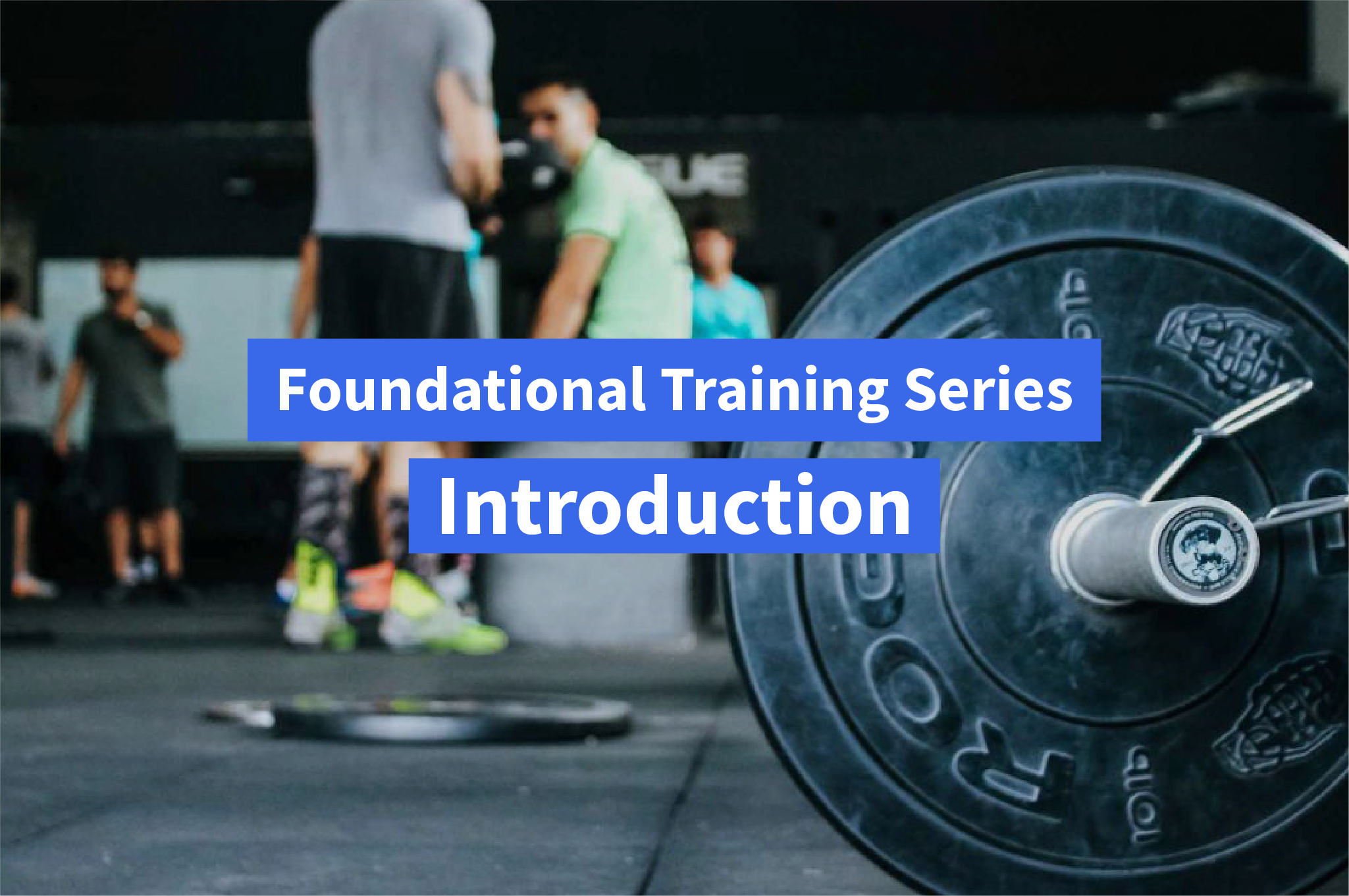Foundational Training Series: Your Guide to Optimal Muscle Growth