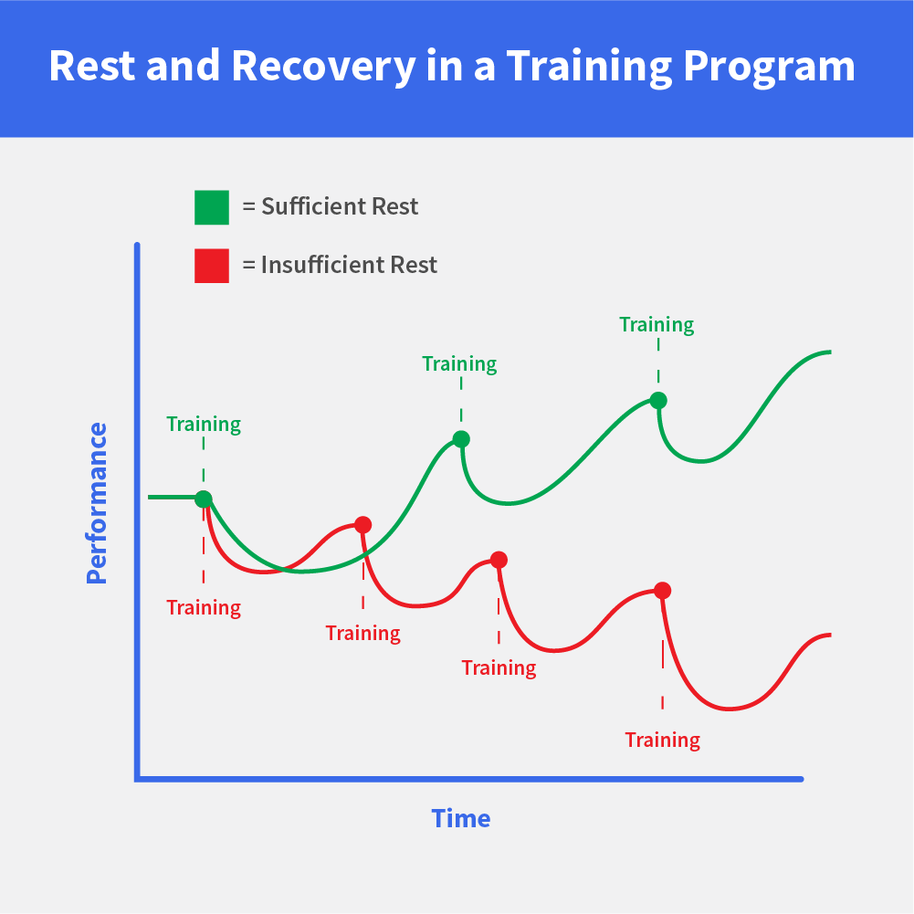 Recovery, Overtraining, and Detraining: Sometimes Less Is More for Muscle Growth