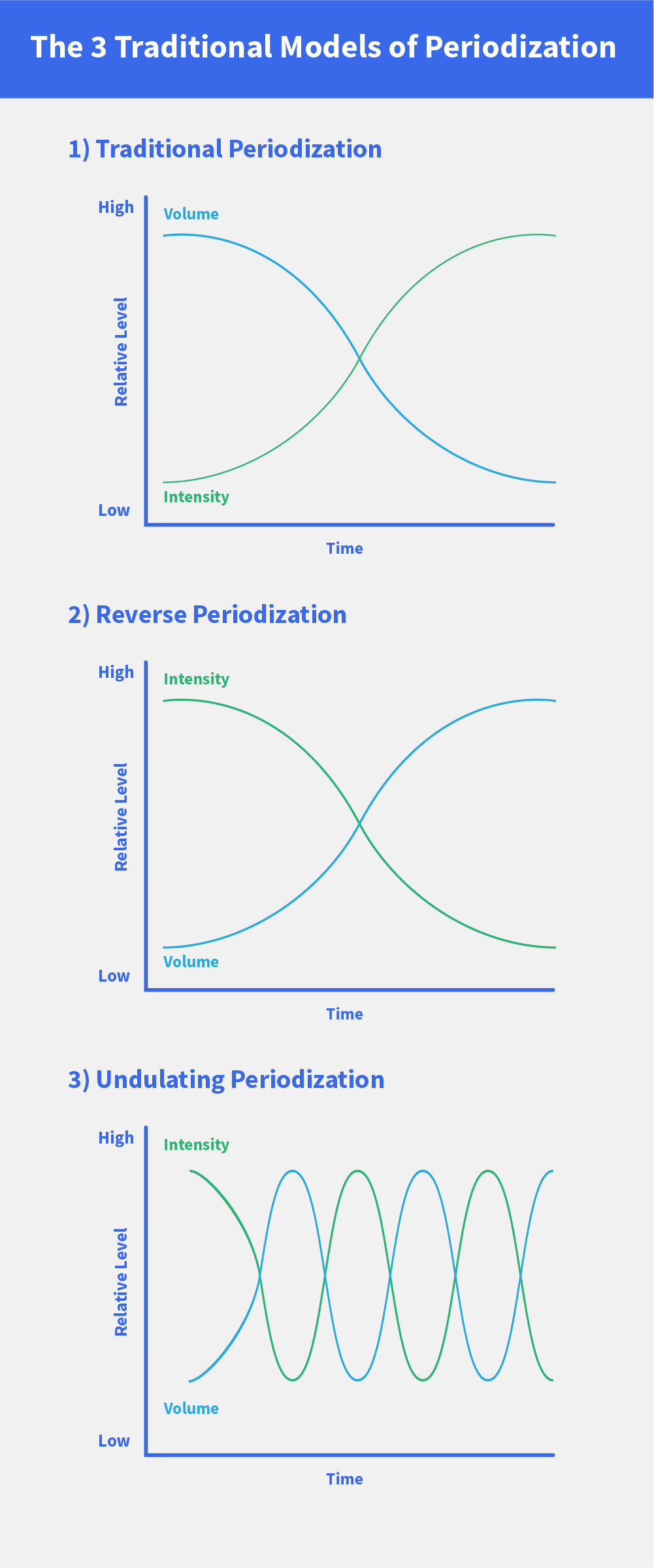 Periodization: 3 Ways to Ensure Consistent Muscle Growth