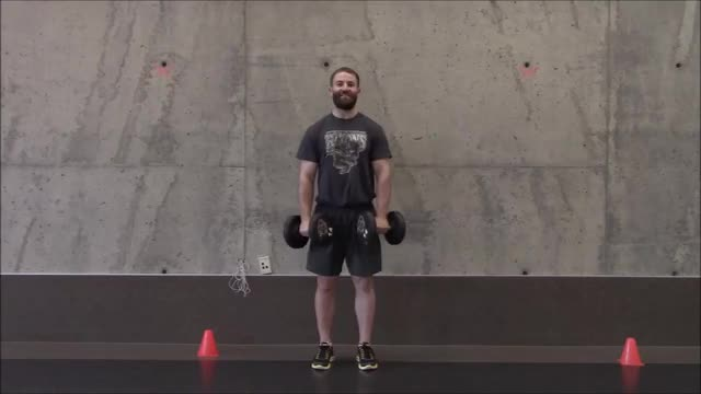 Dumbbell Bicep Curl Pronated Grip demonstration