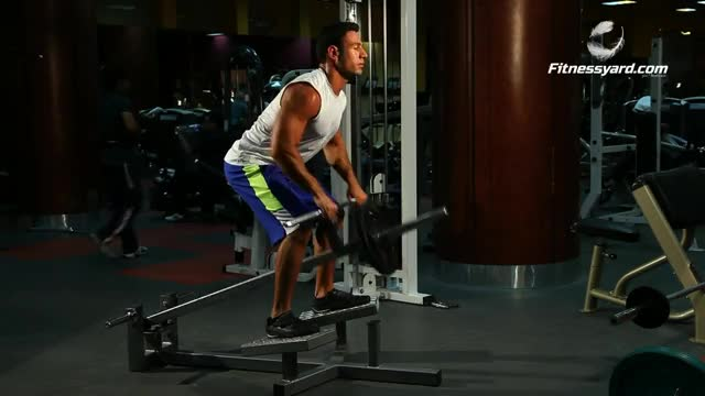 Lever Close Grip T-bar Row (plate loaded) demonstration