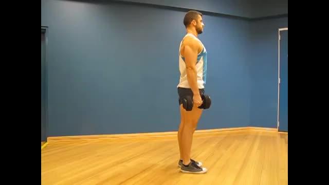 Male Dumbbell Alternating Rear Lunge demonstration