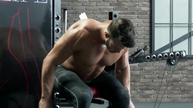 Male Cable Seated Rear Lateral Raise demonstration