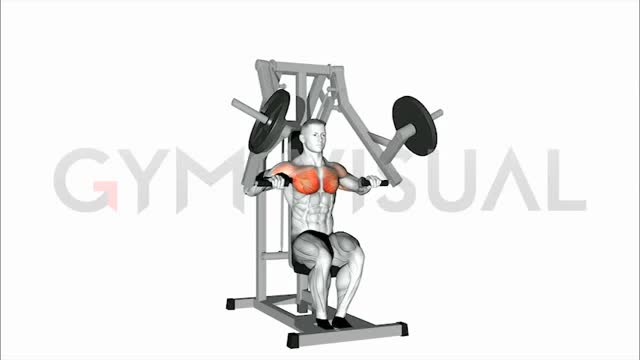 Male Lever Chest Press (plate loaded) Demonstration