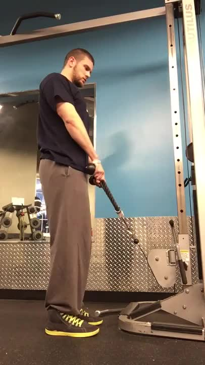 Male Cable Upright Row (with rope attachment) demonstration