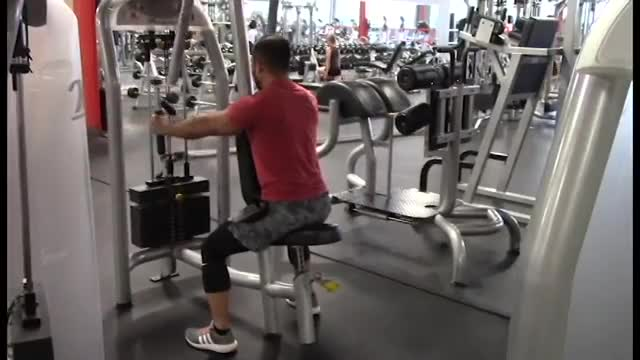 Male Lever Seated Reverse Fly (parallel grip) demonstration