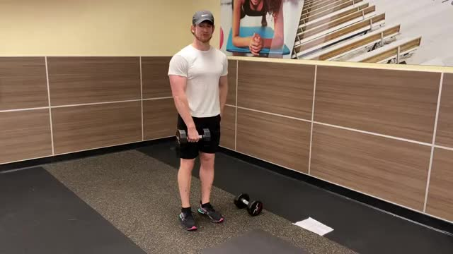 Dumbbell One-Arm Upright Row demonstration