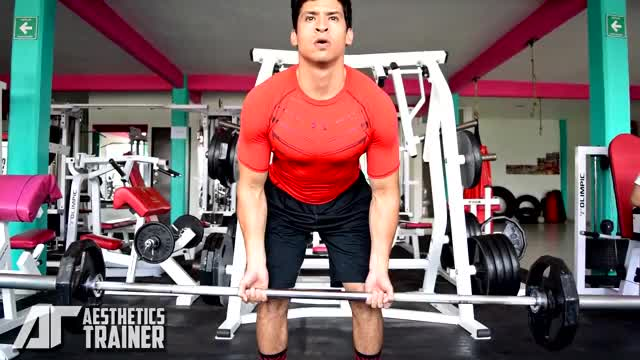 Male Barbell Underhand Bent-over Row demonstration