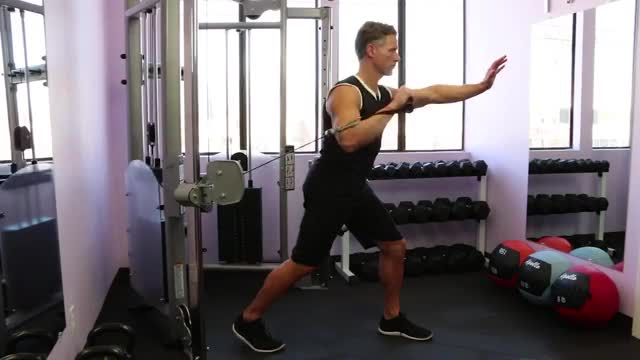 Cable One Arm Standing Incline Chest Press demonstration