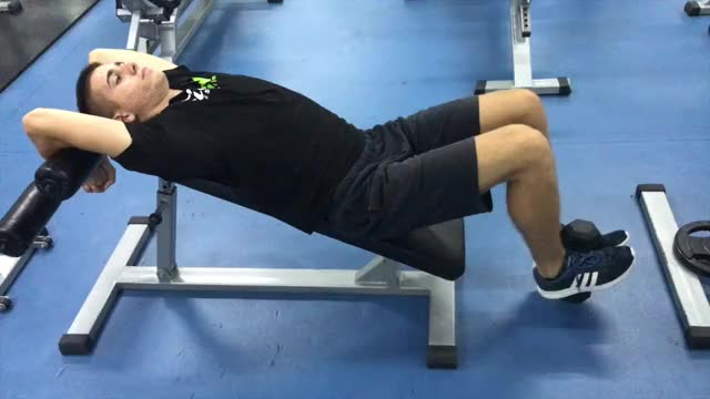 Weighted Incline Leg-Hip Raise demonstration