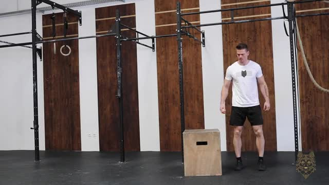 Lateral Box Jump Overs demonstration