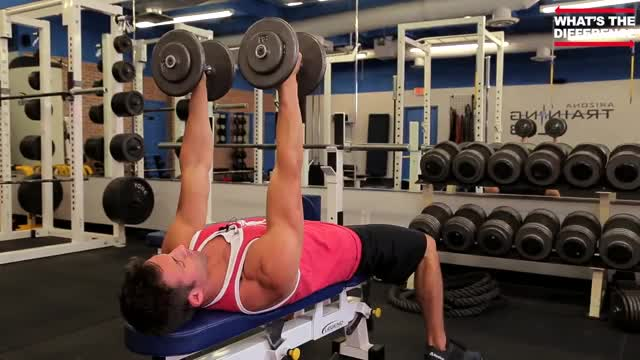 Male Neutral-Grip Dumbbell Bench Press Demonstration