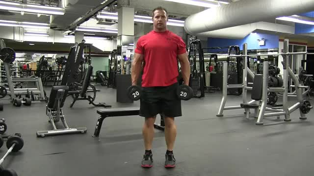 Male Dumbbell Curtsy Lunges demonstration