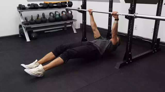 Rear Delt Inverted Row (on hips) demonstration