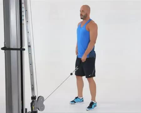 Male Reverse One Arm Cable Curl demonstration