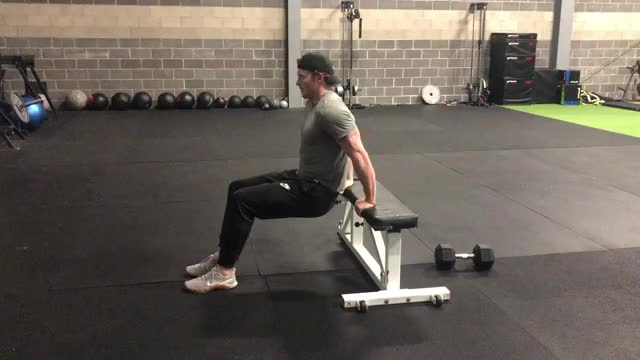 Bench Dip (knees bent) demonstration