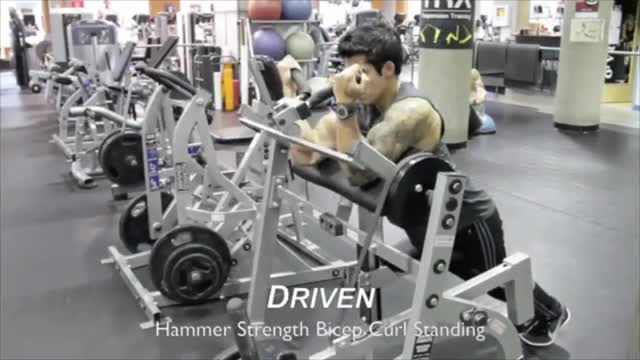 Lever Preacher Curl (no seat, plate loaded) demonstration