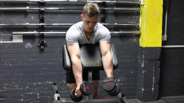 Zottman Preacher Curl demonstration