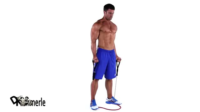 Resistance Band Bicep Curl demonstration