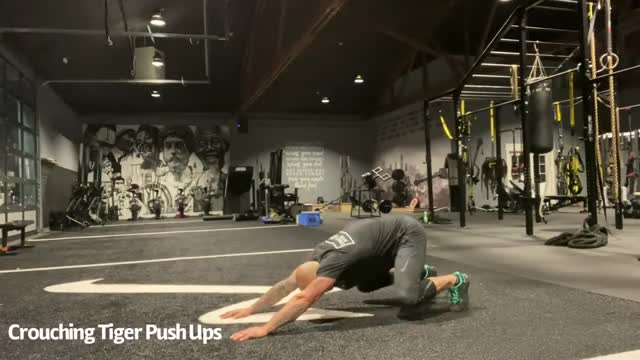Crouching Tiger Push Ups demonstration