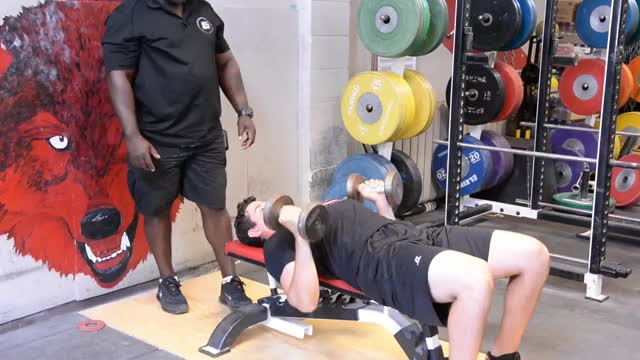 Rotational Grip Dumbbell Bench Press demonstration