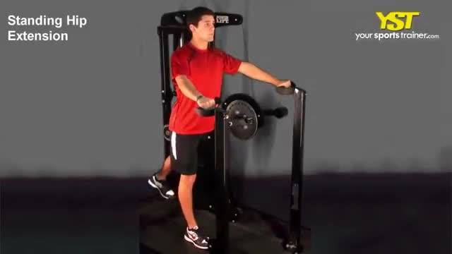 Lever Standing Hip Extension (with abdominal pad) demonstration