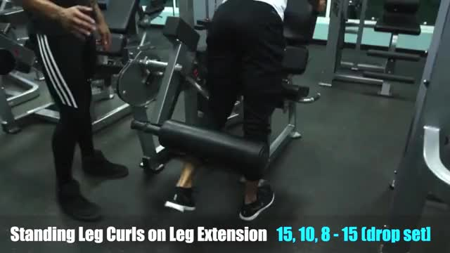 Lever Standing Leg Curl (on leg extension) demonstration