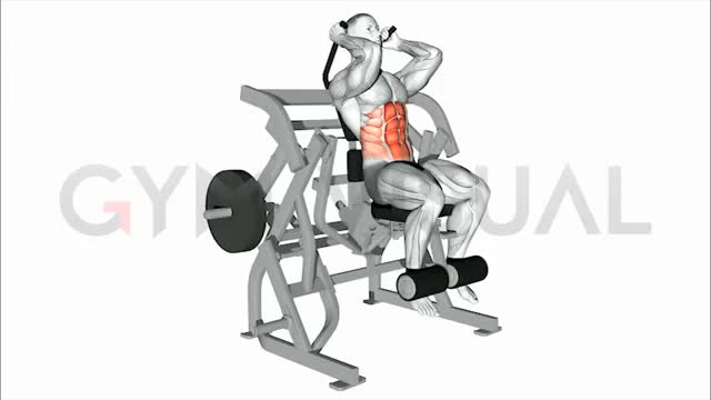 Male Lever Seated Leg Raise Crunch (plate loaded) demonstration