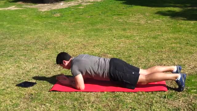 Plank Reach demonstration