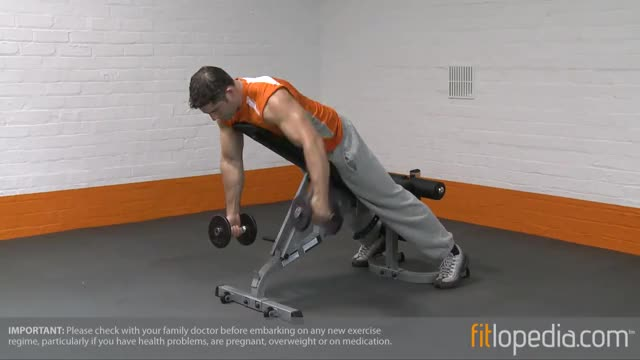 Male Alternate Dumbbell Reverse Fly On Incline Bench demonstration