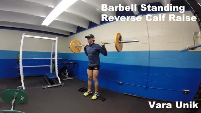 Male Barbell Reverse Calf Raise demonstration