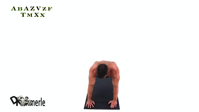 Push-Up with Rotation demonstration