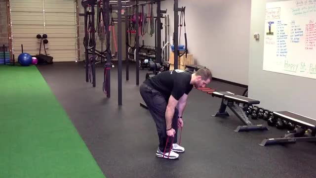 Bent Over Row with Resistance Bands demonstration
