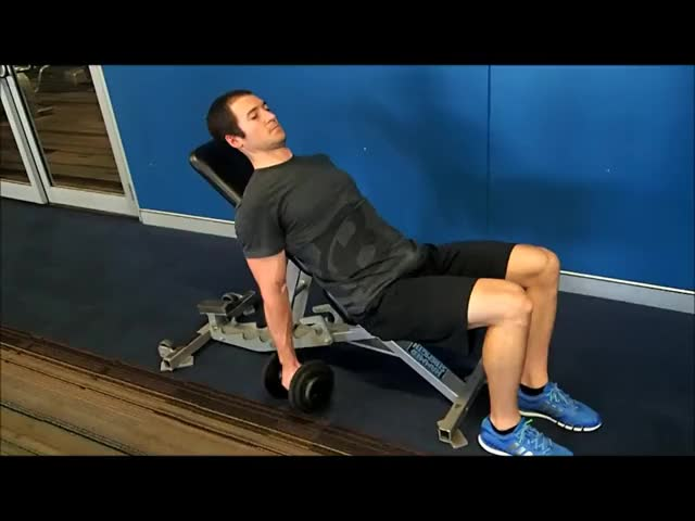 Alternate Incline Hammer Curl demonstration