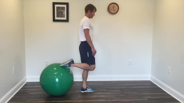 Male Physio Step Back Lunge demonstration