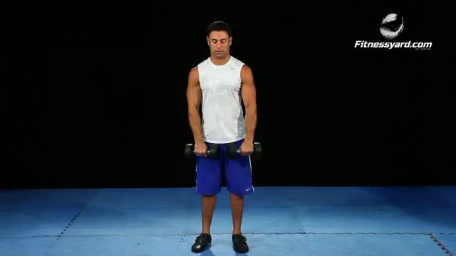 Standing Dumbbell Straight-Arm Front Delt Raise Above Head demonstration