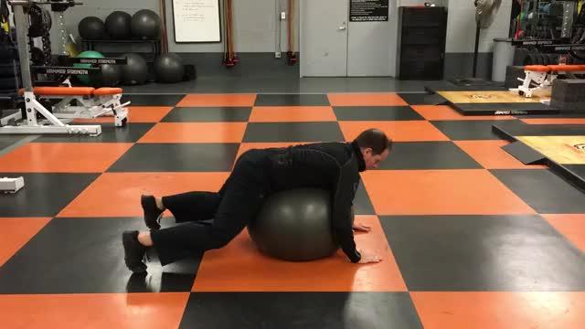 Swiss Ball Opposite Arm and Leg Lift demonstration