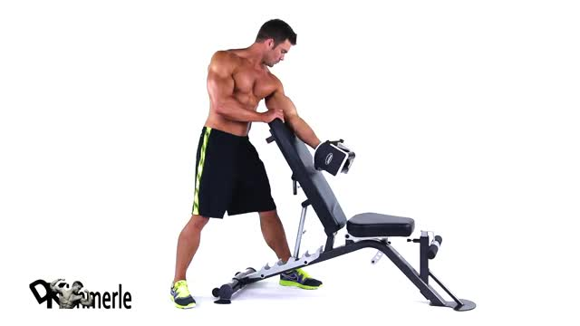 Standing One-Arm Dumbbell Curl Over Incline Bench demonstration