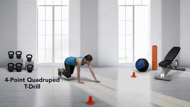 4-Point Quadruped T-Drill demonstration