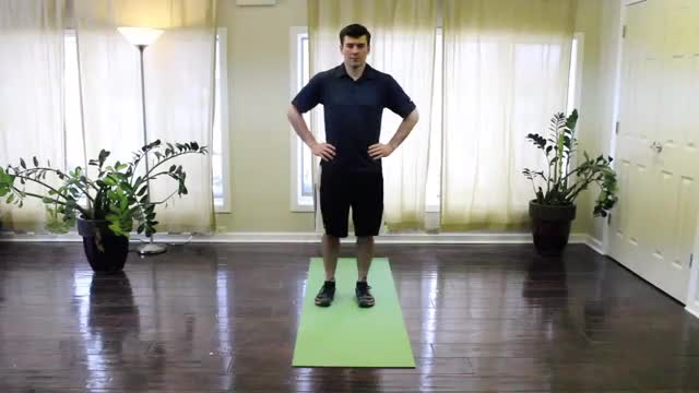 Single Leg Squat Reach demonstration