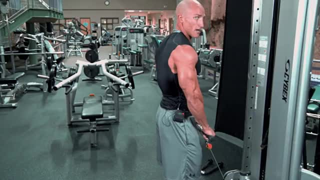 Male Lever Reverse Curl demonstration