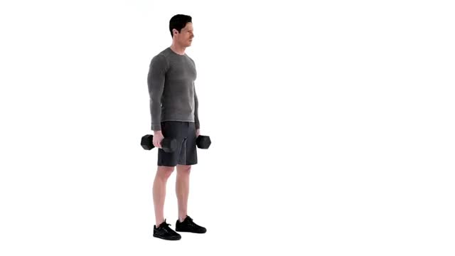 Male Dumbbell Hammer Curl to Lunge to Press demonstration