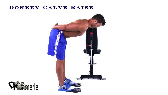 Donkey Calf Raise demonstration