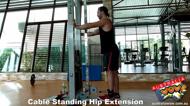 Male Cable Standing Hip Extension demonstration