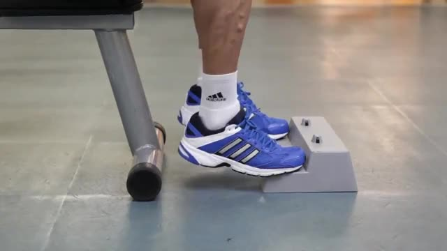 Barbell Seated Calf Raise demonstration