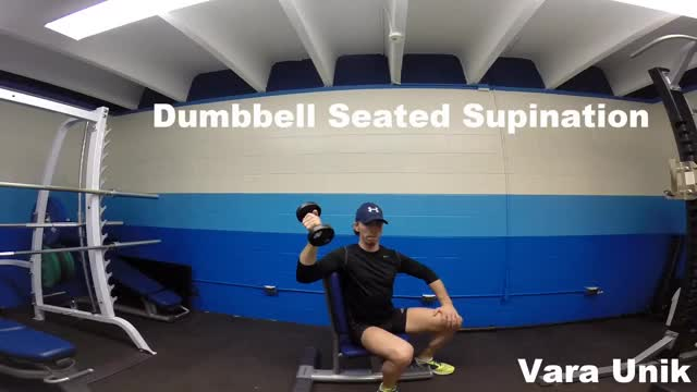 Male Dumbbell Seated Supination demonstration
