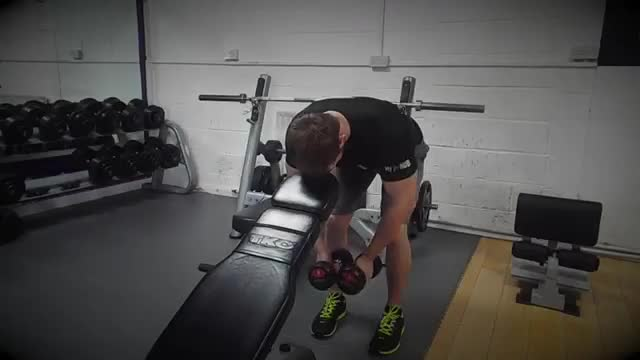 Bent Over Dumbbell Rear Delt Raise With Head On Bench demonstration