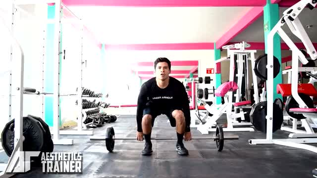 Barbell Hack Squat demonstration