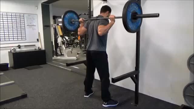 Barbell Squat (low bar) demonstration