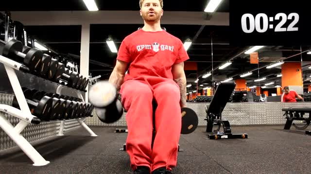 Seated Hammer Curl demonstration